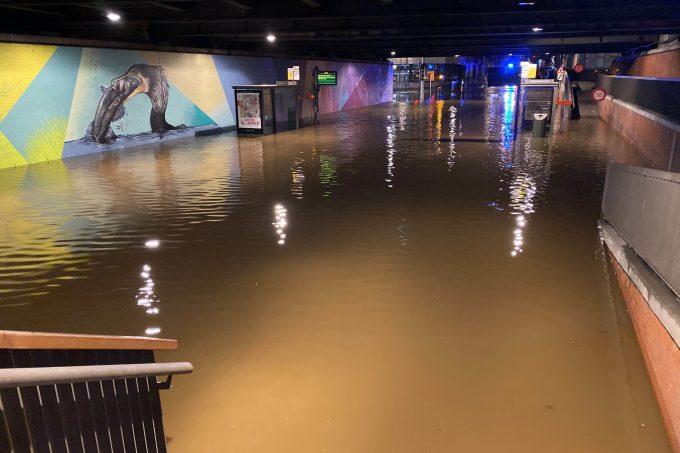 BFM Stormschade Antwerpen 11